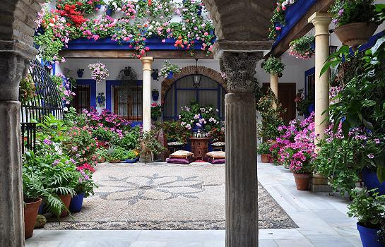 Blogosferia patios en flor for Fotos de patios