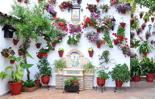 Los patios farandac - Fotos de aticos decorados ...